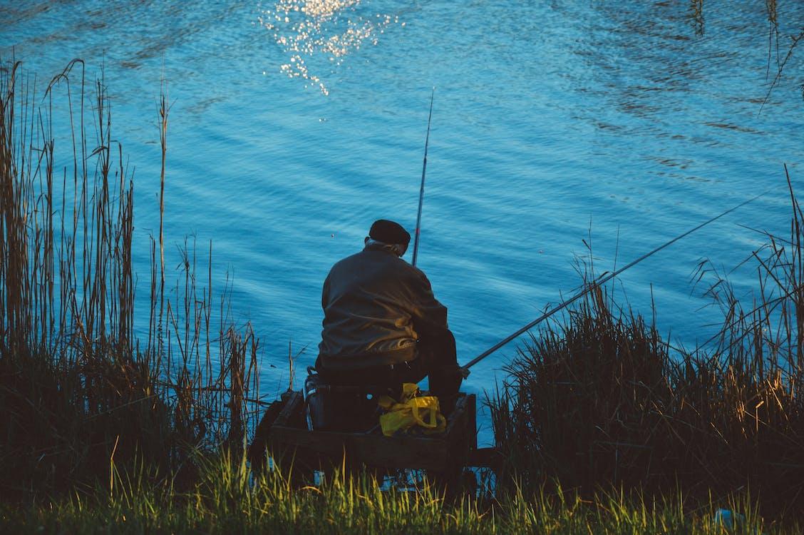 αλιεία, άνδρας, λιμνούλα