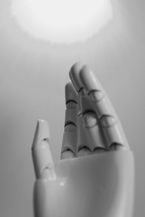 Black and White Photo of a Hand