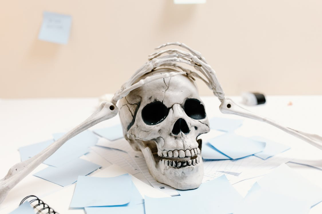 White Skull on White Paper