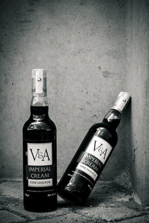alkohol, bar, chladný