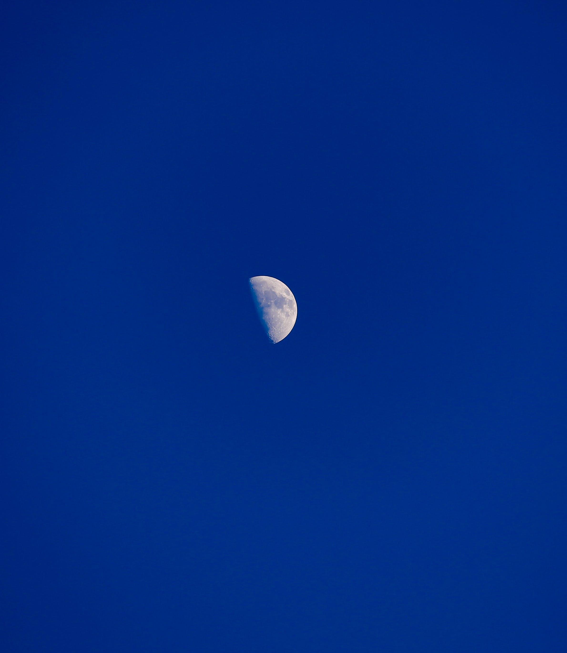 Free stock photo of half moon, half-moon