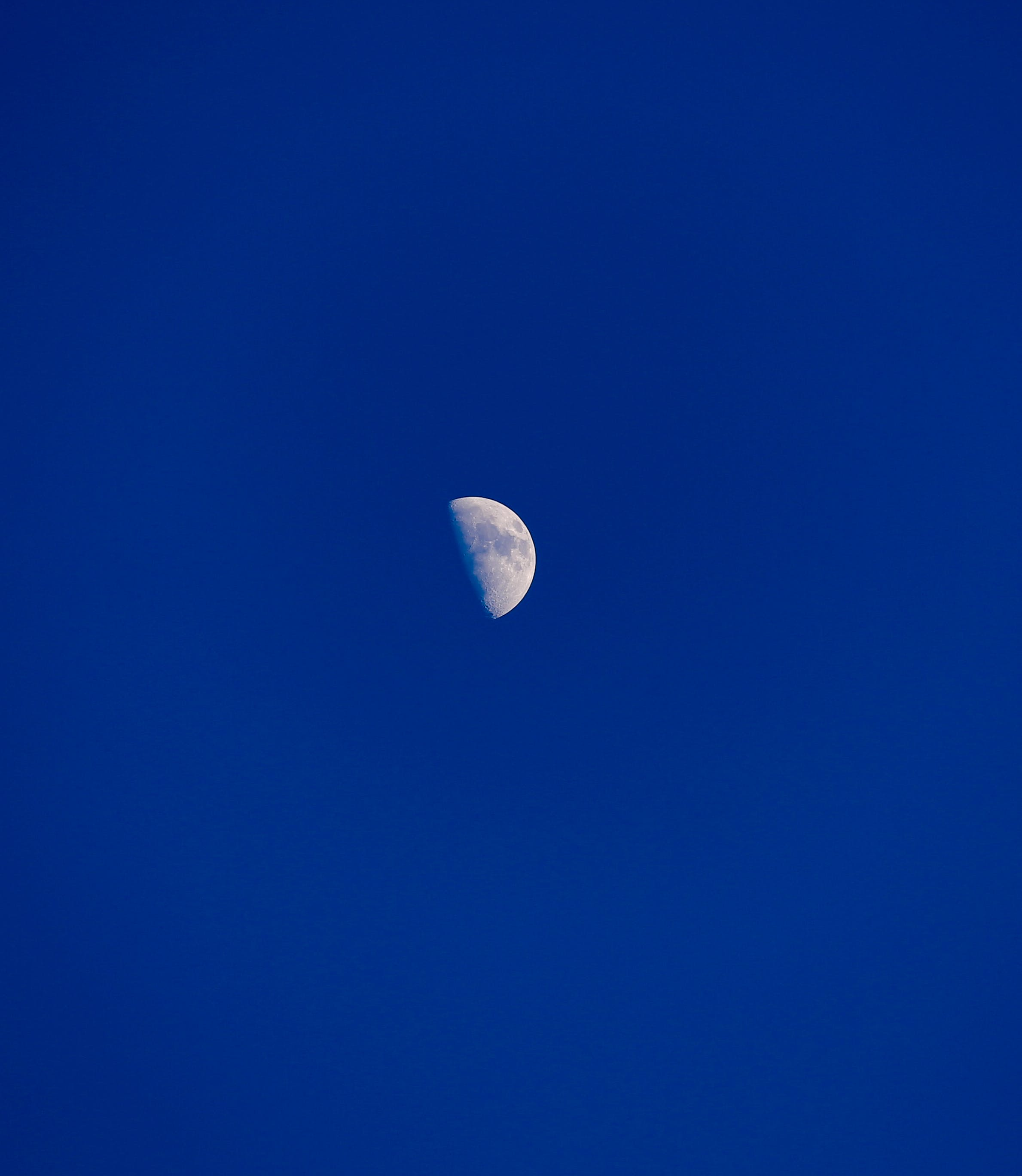 Free stock photo of half moon, half-moon