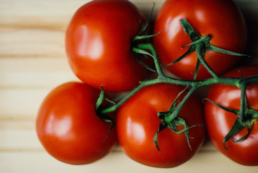 Free stock photo of food, tomatoes, vegetarian, vegetable