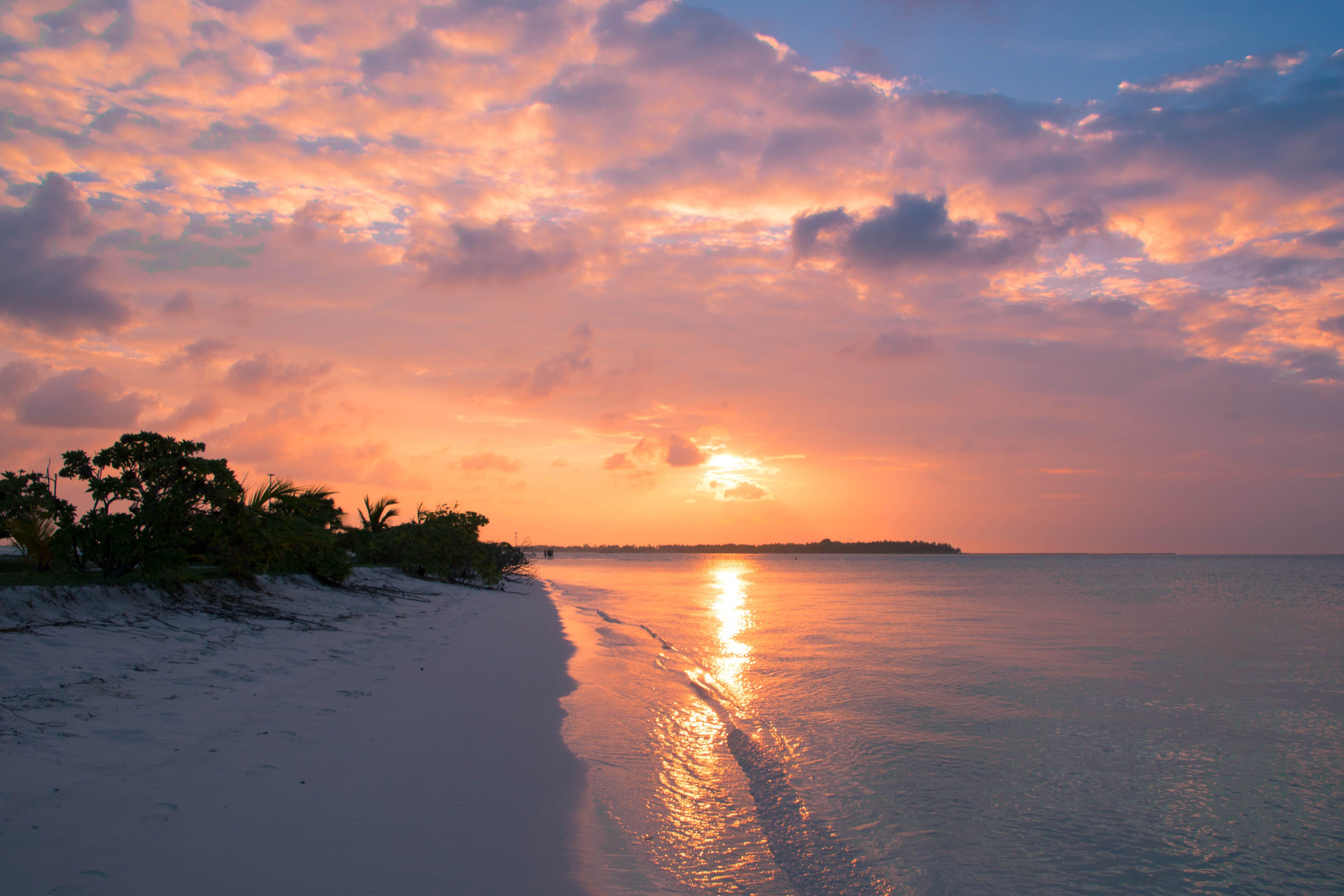 Free stock photo of beach, clouds, dawn, dusk