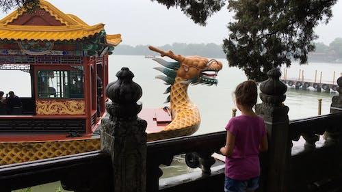 Безкоштовне стокове фото на тему «lago, pekin, навергар»