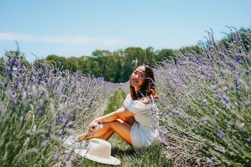 Free stock photo of aromatherapy, beautiful, countryside