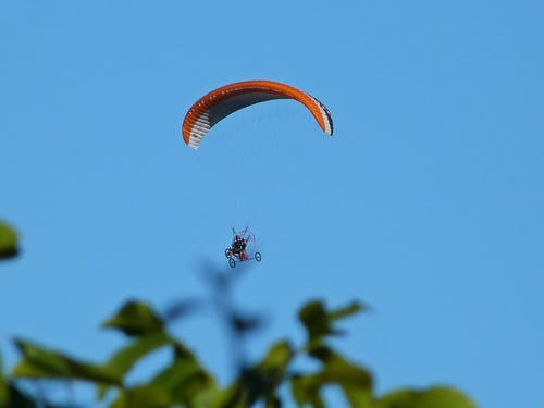 Free stock photo of paragliding, paragliding through leaves