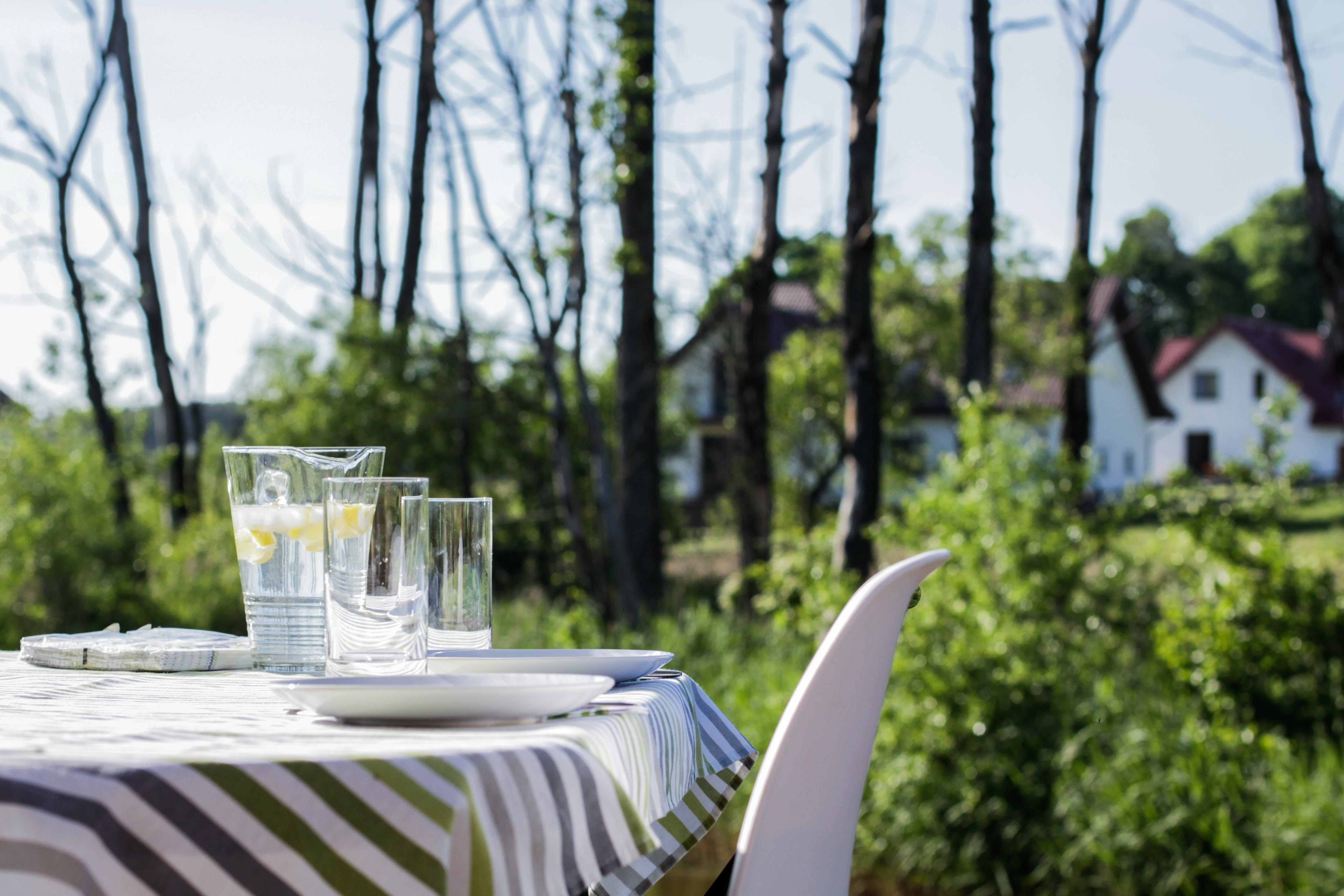 Free stock photo of houses, trees, table, green