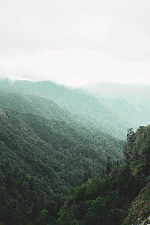 Free stock photo of dawn, daylight, doğa ana