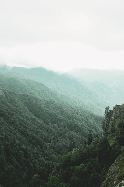 Foto stok gratis air, bukit, cairan