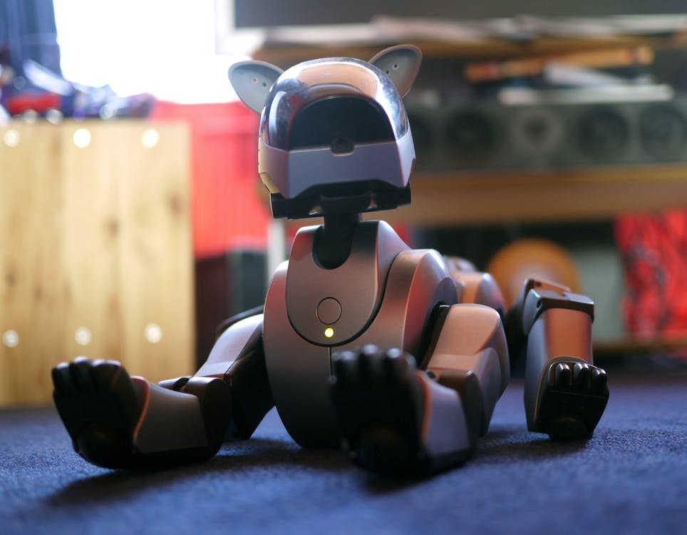 Kostenloses Stock Foto zu elektronisches spielzeug, haustier, roboter