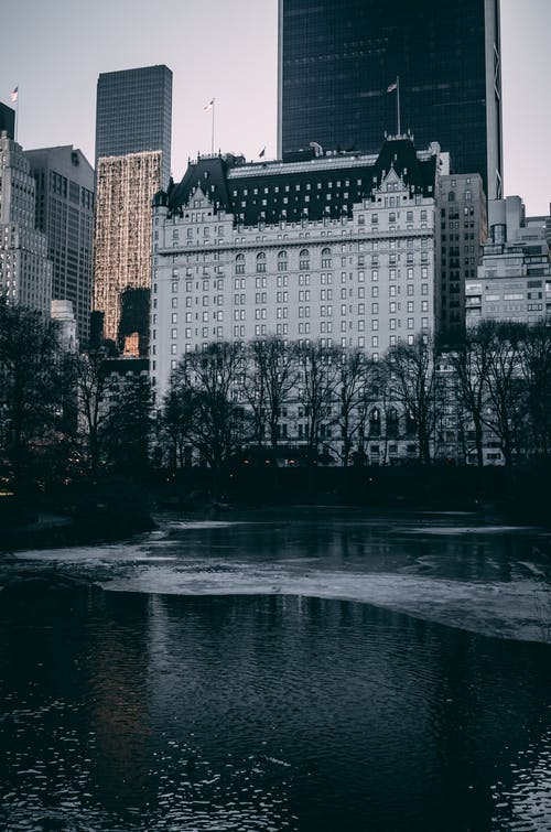 Free stock photo of architecture, building, central park, city