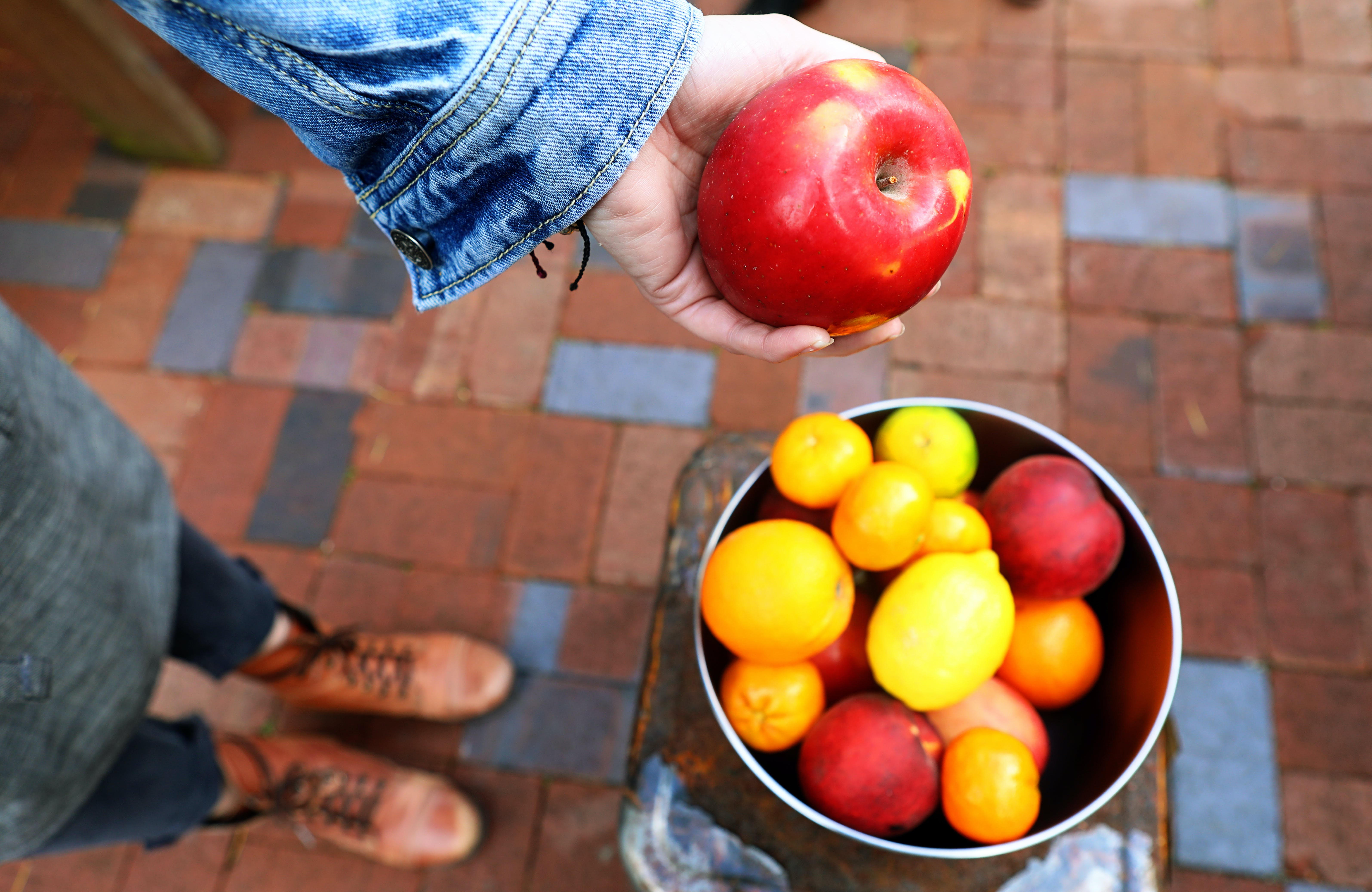 Person Holding Apple Fruit