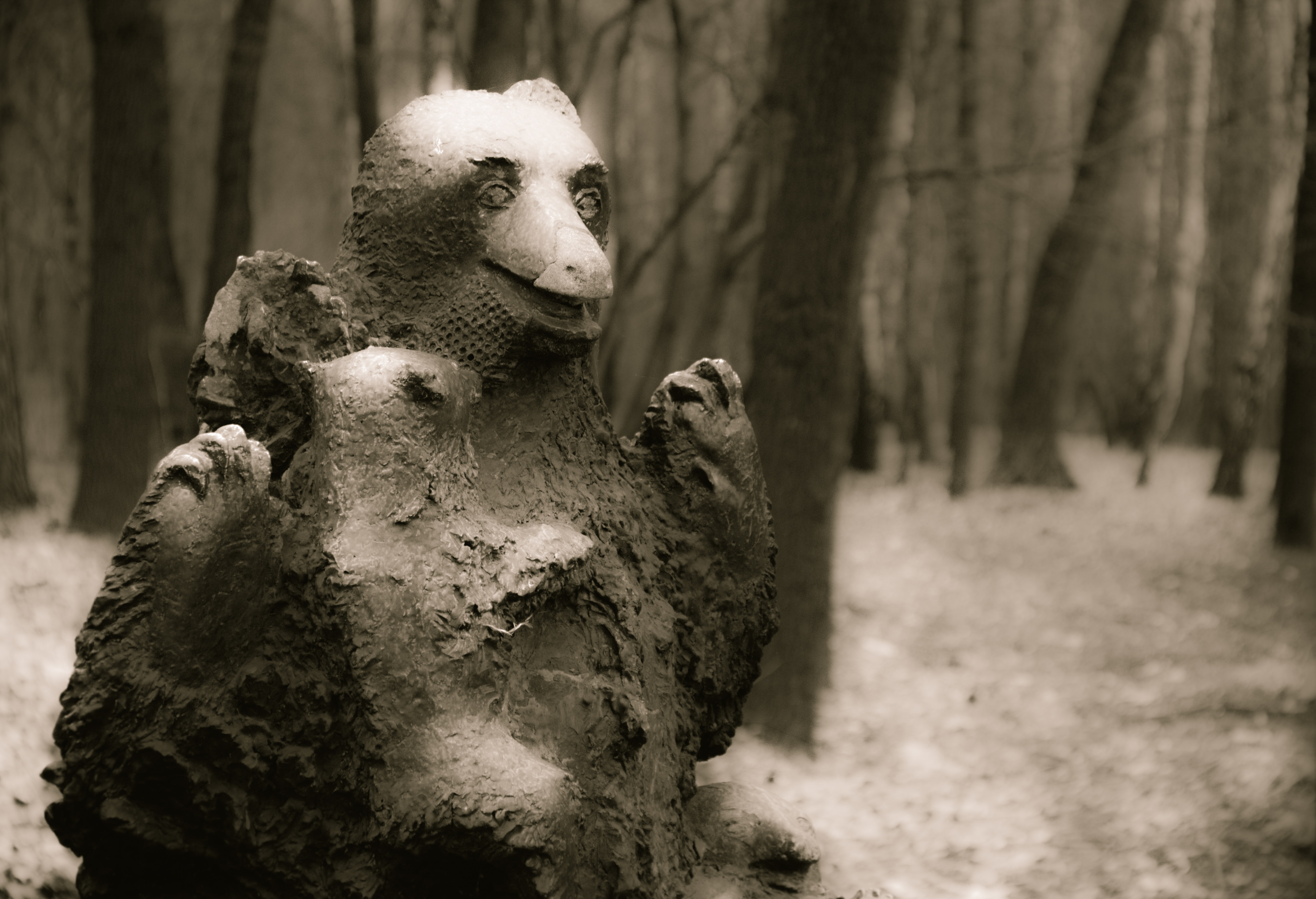 Free stock photo of bear, creepy, forest