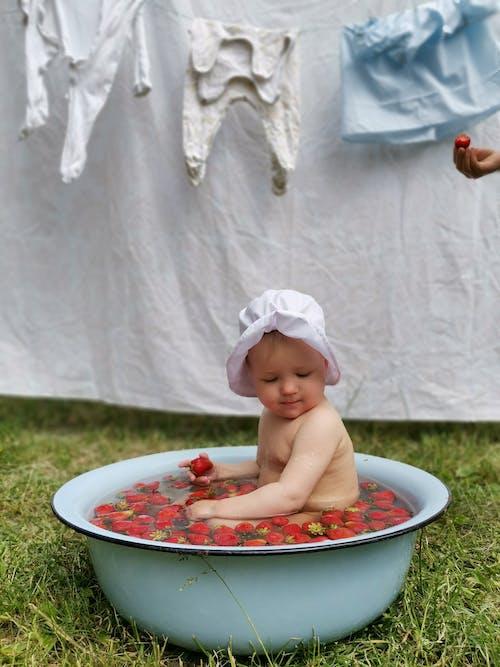 Foto d'estoc gratuïta de adorable, aigua, banyant-se