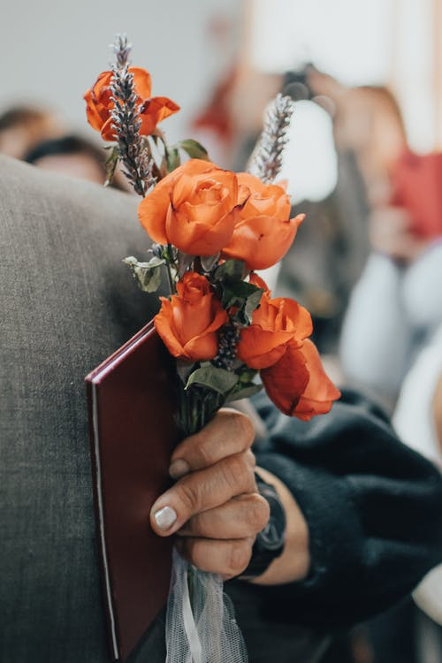 Close-Up View of Person Holding Orange Roses