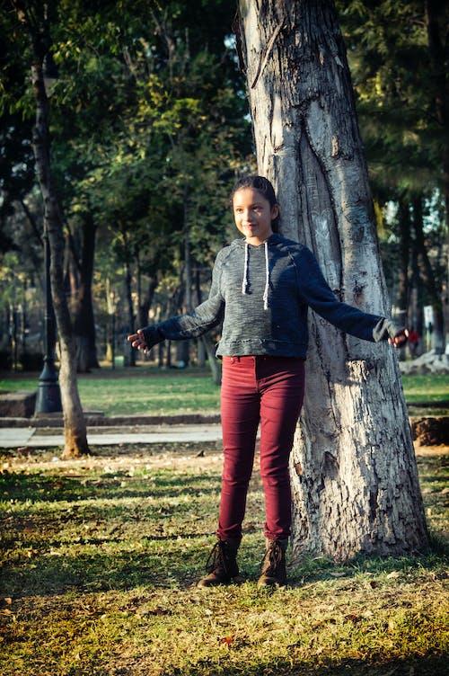 Foto d'estoc gratuïta de arbre, diversió, forrest, moment