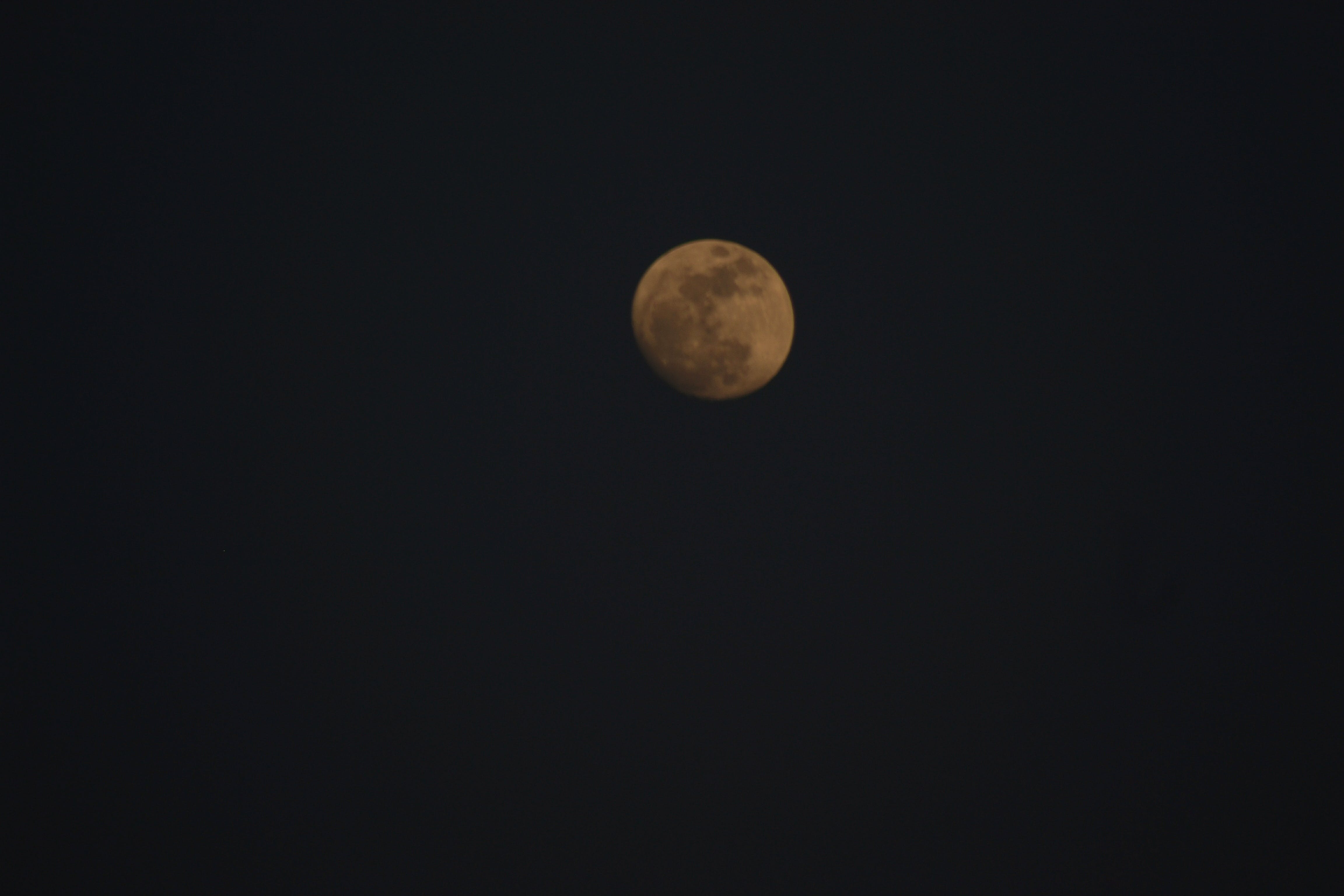 Free stock photo of love, moon, contrast, india