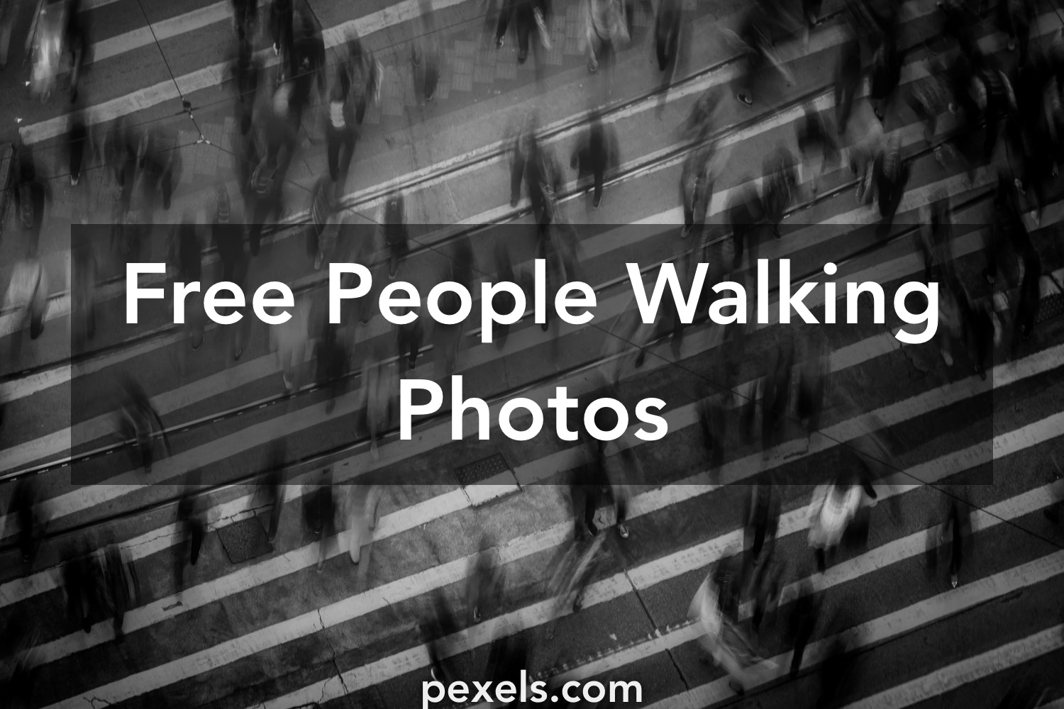 1000 Great People Walking Photos Pexels Free Stock