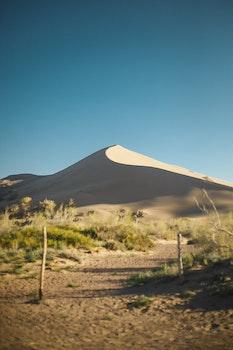 Green Grass Across Desert Under Blue Sunny Sky