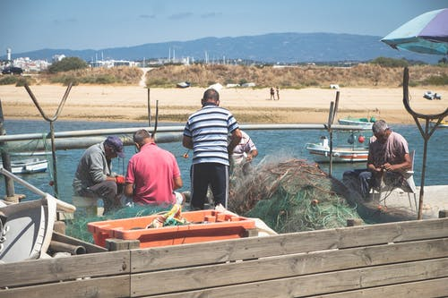 Free stock photo of algarve, fisherman, net