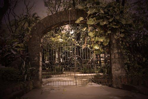 Бесплатное стоковое фото с бетон, ворота, гриль, железо