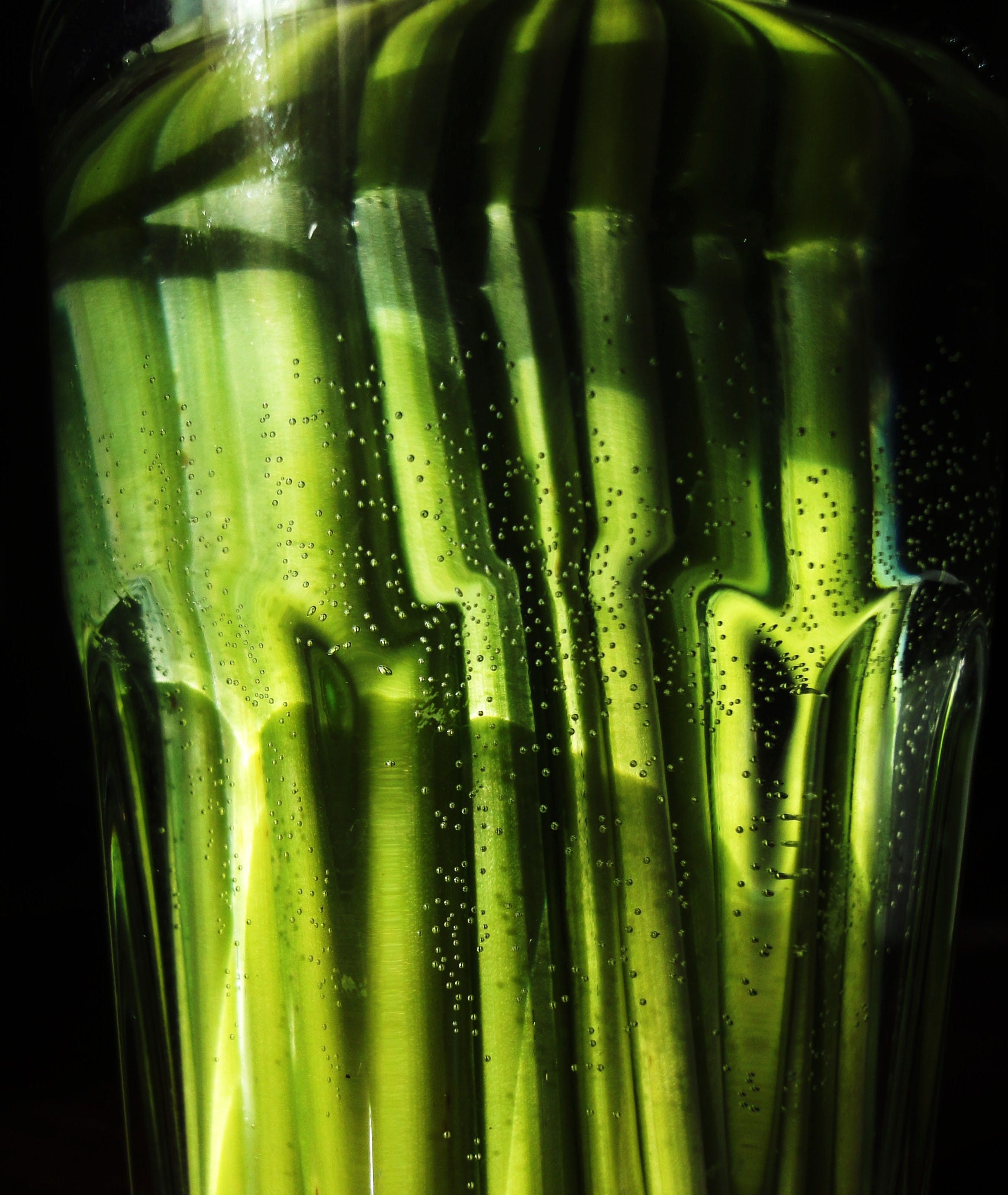 Free stock photo of glass, green