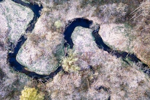 假期, 地質學, 岩石 的 免費圖庫相片