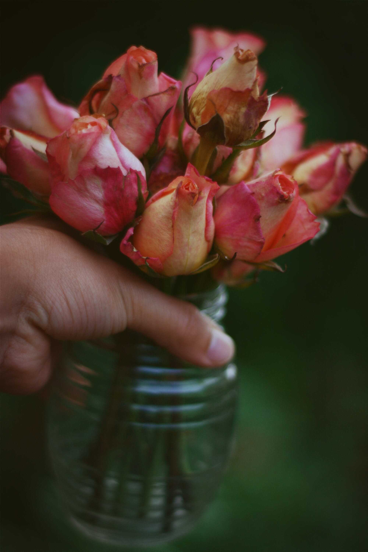 Pink and White Rose Flower Arrangement in Vase