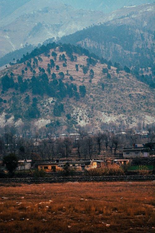 bjerge, landsby, pakistan