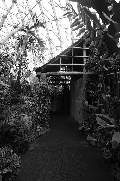 Darmowe zdjęcie z galerii z architektura, budynek, chata, dzień