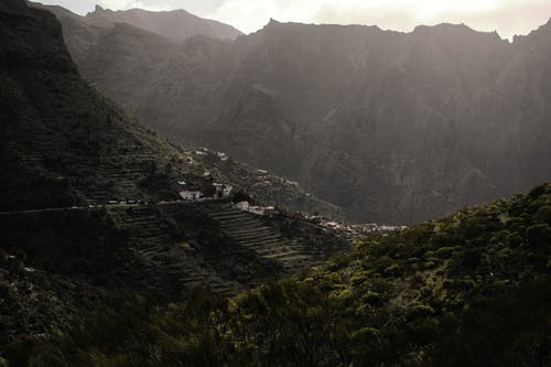Δωρεάν στοκ φωτογραφιών με βουνά, γρασίδι, γραφικός, δάσος