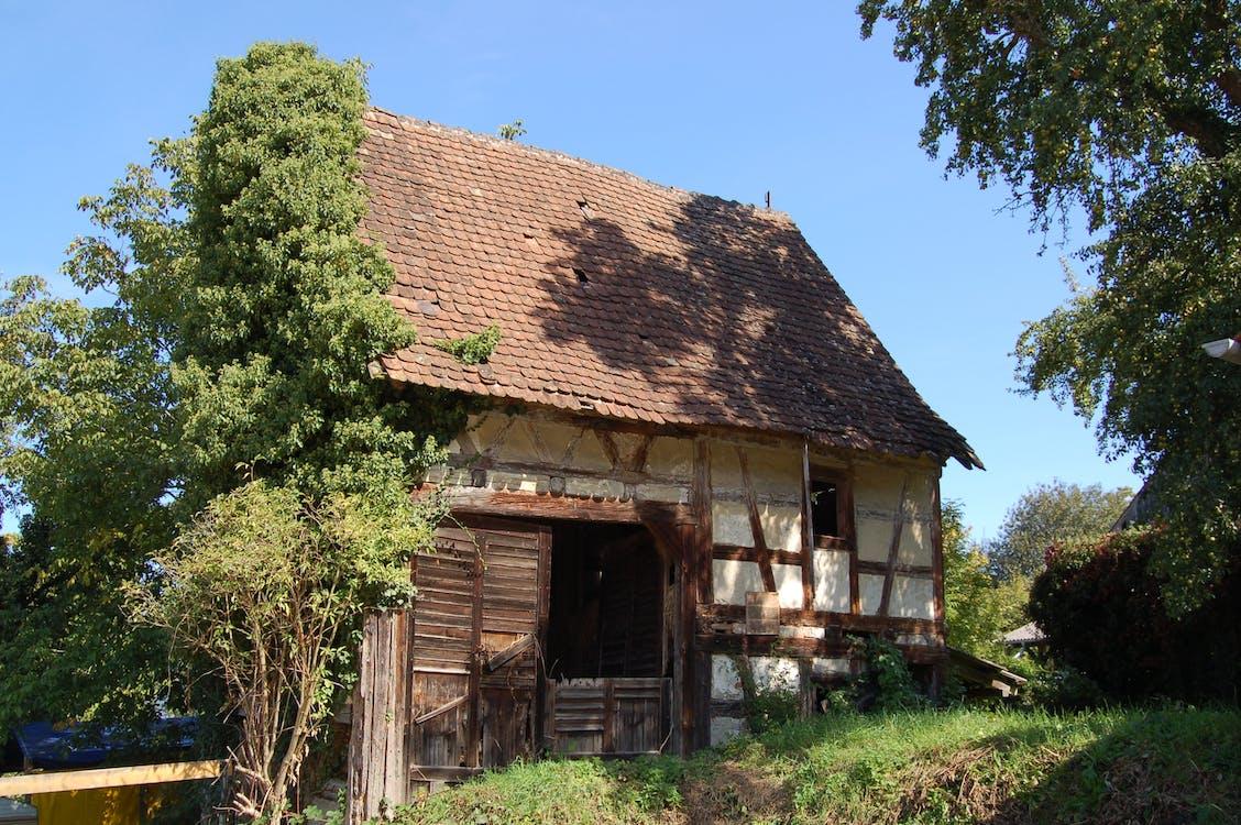 altes haus, bauernhof, farm
