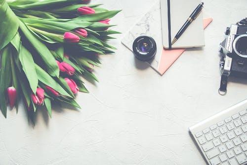 Kostnadsfri bild av arbetsyta, blommor, elektronik, färger