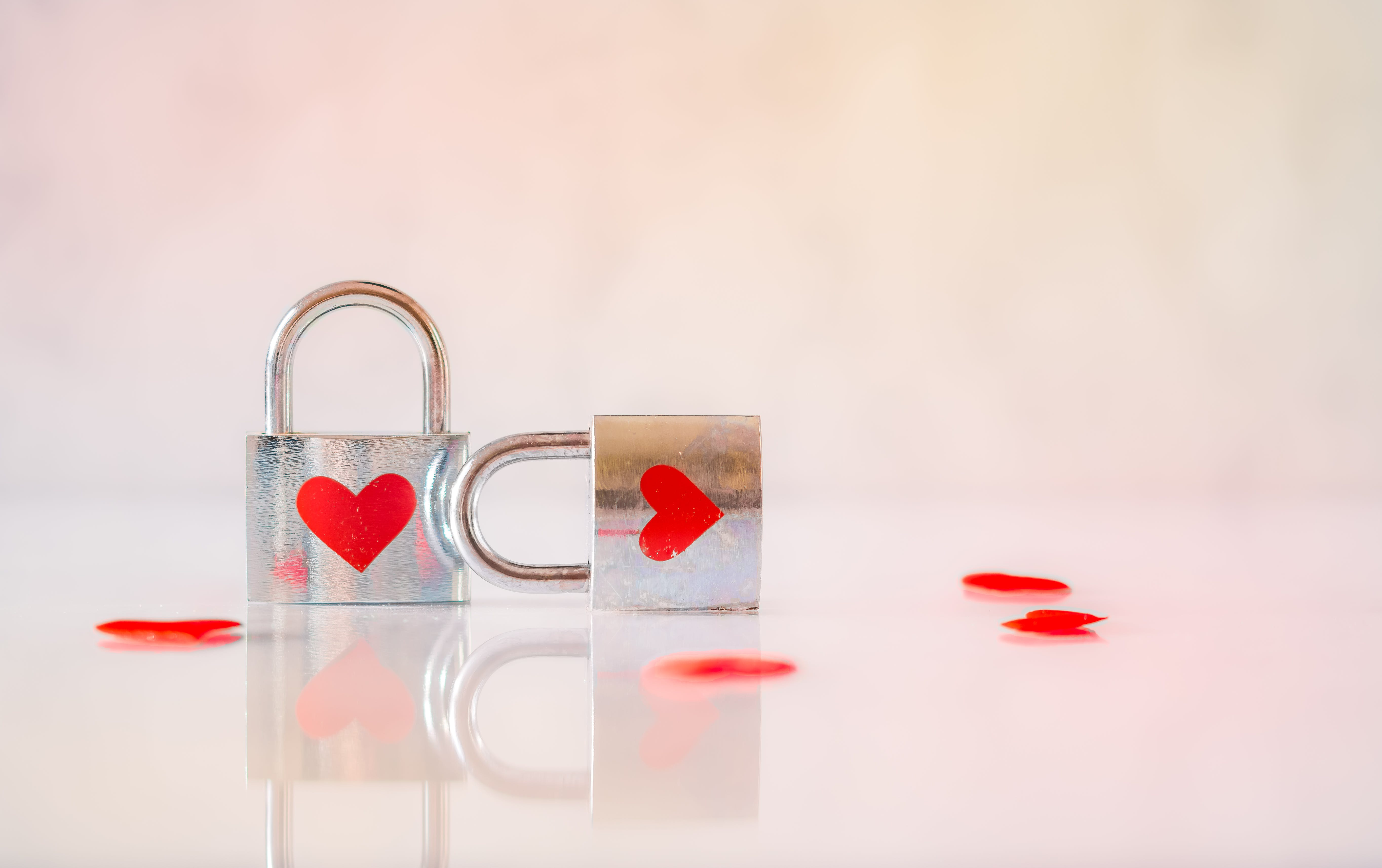 Two Stainless Steel Padlocks