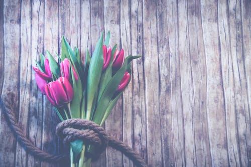 Красный букет тюльпана поверх коричневой деревянной поверхности