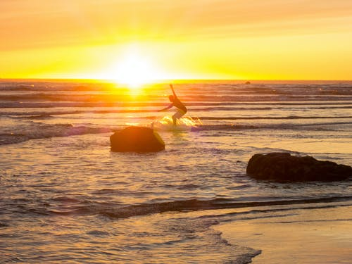 Free stock photo of sunset, surf, surfing