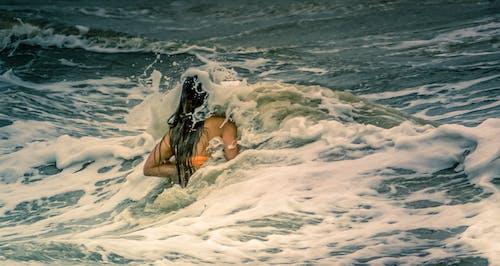 Foto profissional grátis de água, fêmea, mar, nadar