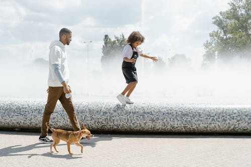 A Family Walking Their Dog in a Park