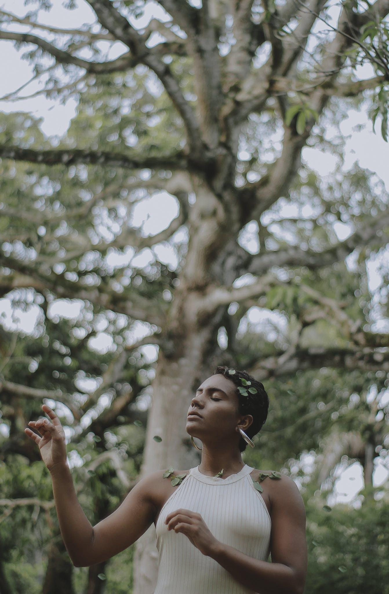 Kostenloses Stock Foto zu bäume, brasilien, erwachsener, fotoshooting