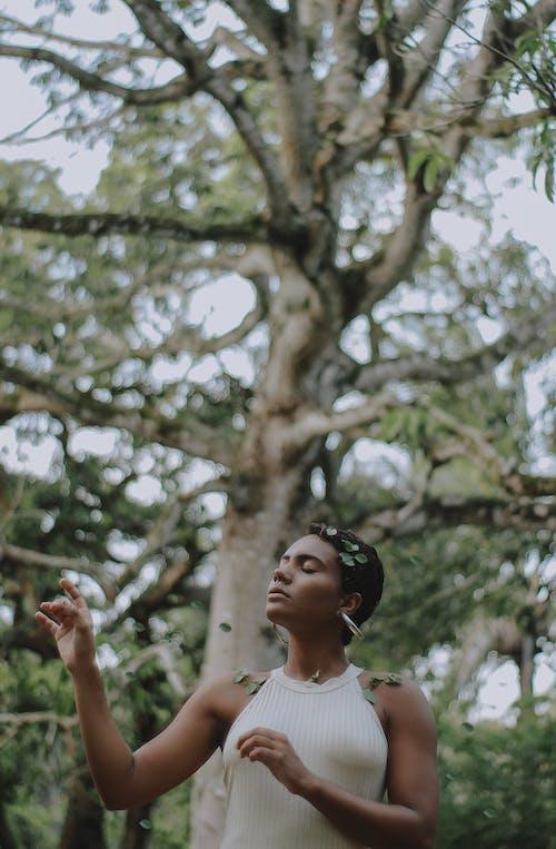 Immagine gratuita di adulto, alberi, bellissimo, brasile