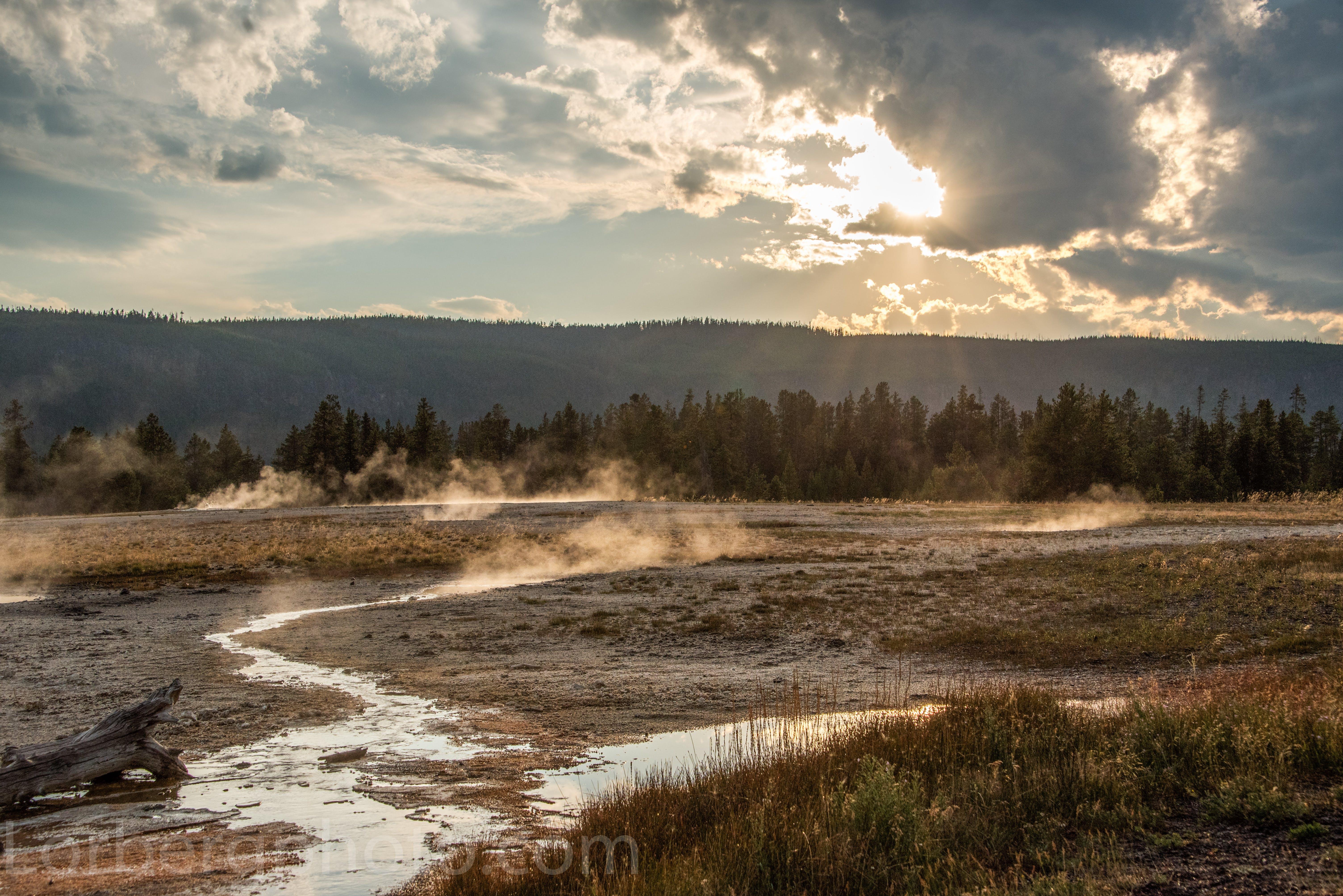 Free stock photo of yellowstone national park