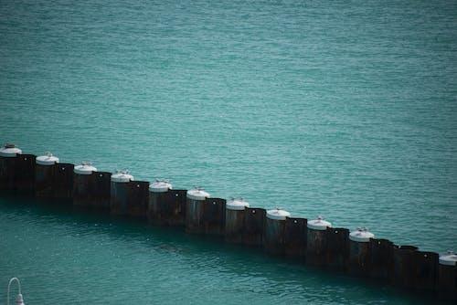 Photos gratuites de eau, océan, port