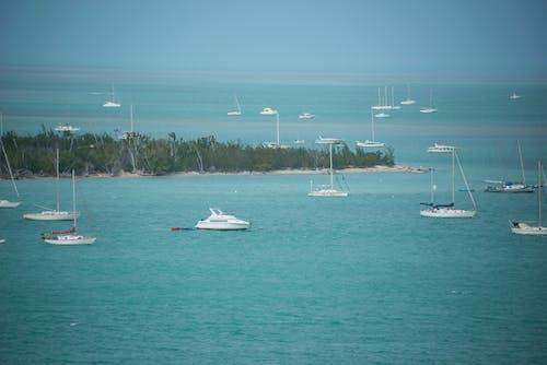 Photos gratuites de bateau, eau, océan