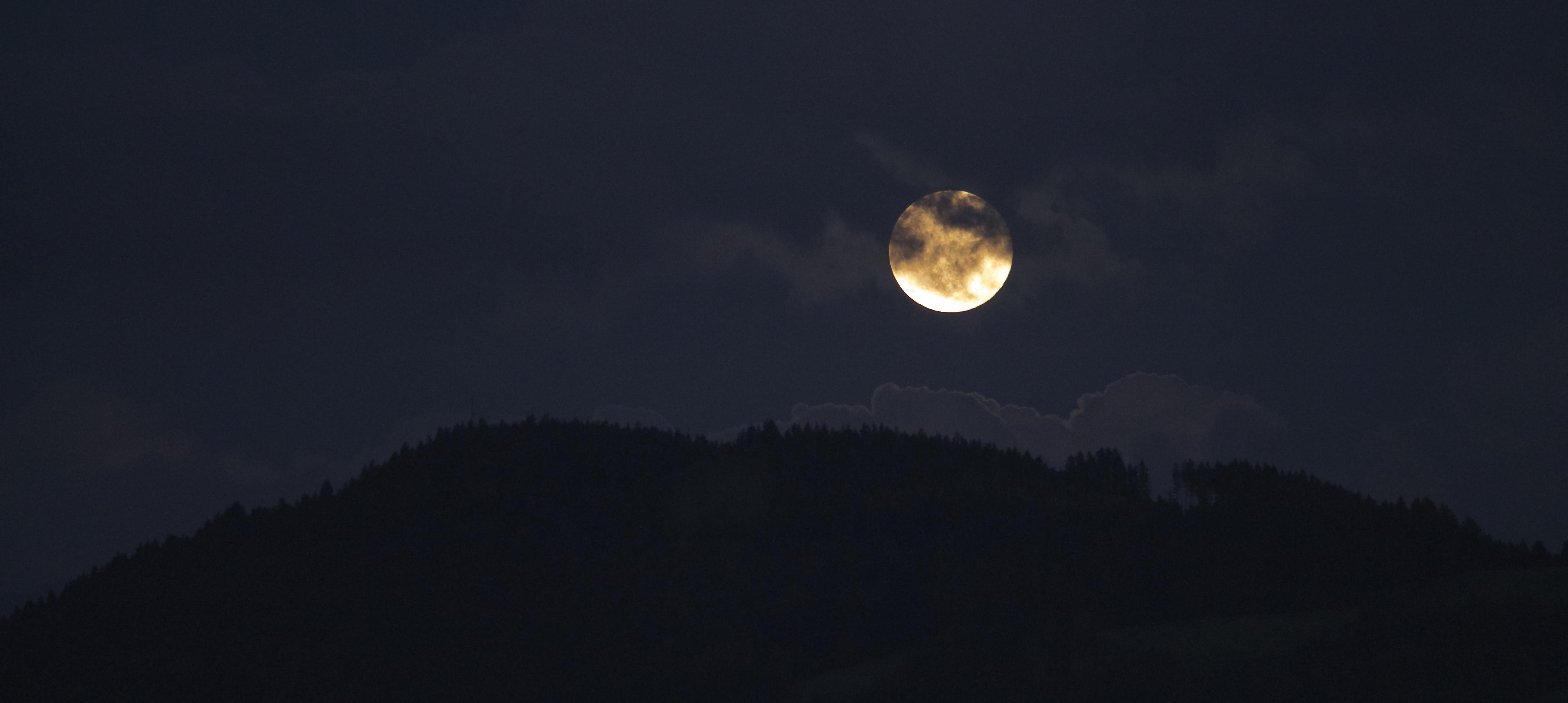 Free stock photo of sky, night, moon, spooky