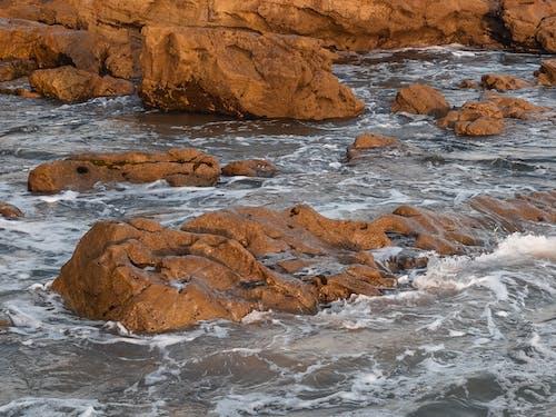 Immagine gratuita di mare, natura, oceano