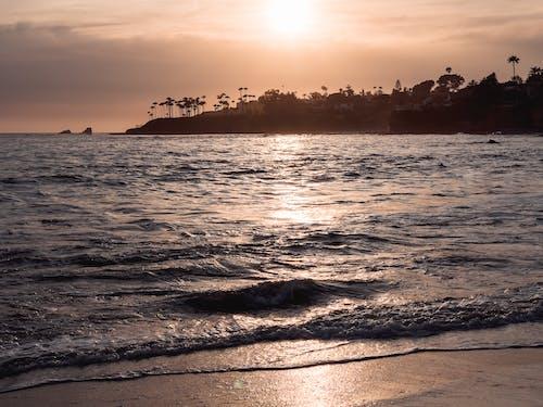 剪影, 天性, 岸邊 的 免費圖庫相片