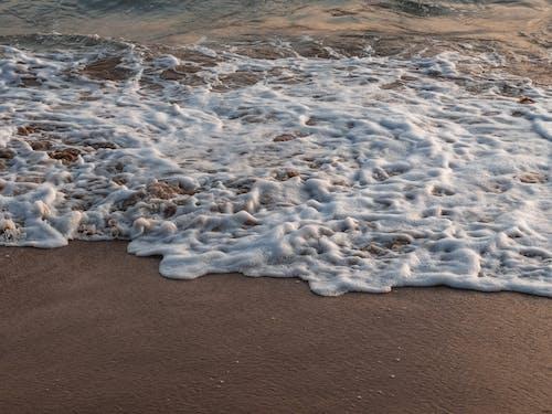 Immagine gratuita di litorale, mare, natura