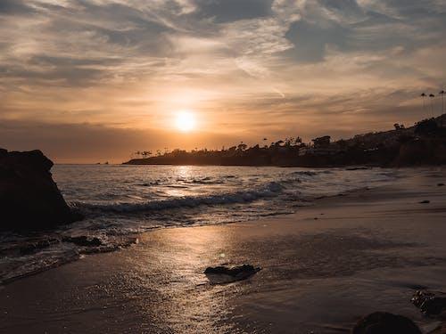 剪影, 天性, 太陽 的 免費圖庫相片