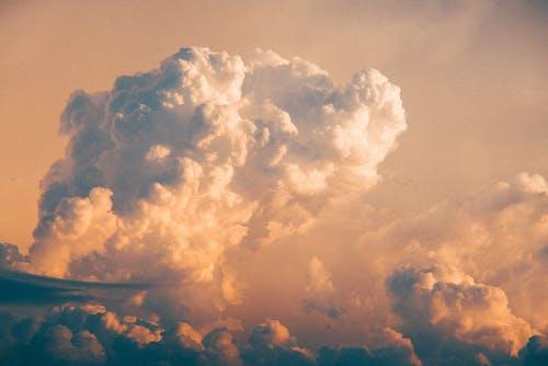 Gratis stockfoto met bewolkt, donsachtig, donzig